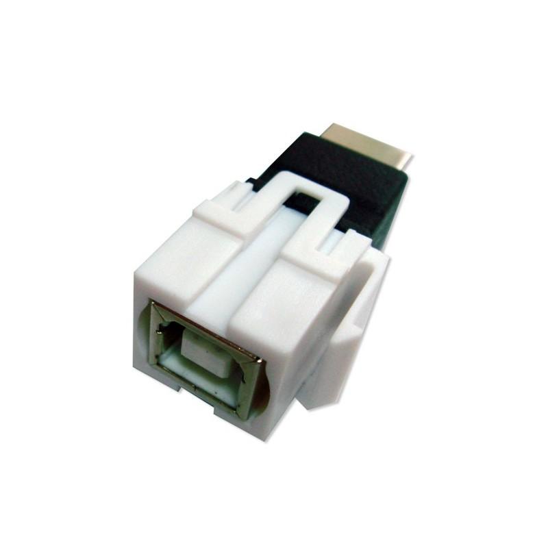adaptateur keystone usb 2 0 b femelle b femelle micro data br en ligne. Black Bedroom Furniture Sets. Home Design Ideas
